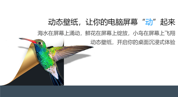 小鳥壁紙 V3.1119.1150.920 官方版