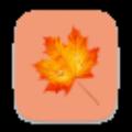 楓葉超級外鏈 V1.0 綠色版