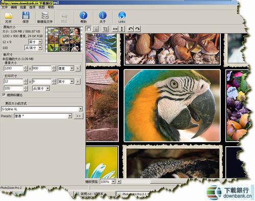 ShortCut PhotoZoom Pro(數碼圖片無損放大工具)下載 v5.0.4 多國語言綠色版
