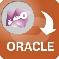 AccessToOracle(access导入oracle数据库工具) V3.7